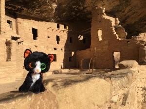 Dib Dab at Mesa Verde