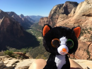 ...at Zion National Park
