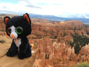 ...at Bryce canyon
