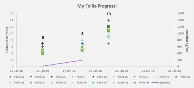 160120_IVF2_Follie