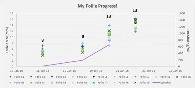 160122_IVF2_Follie