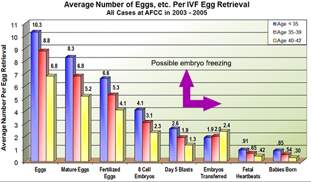 Average number of blastocysts per IVF cycle – The Great Pudding Club